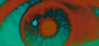 25_eye