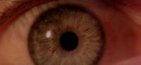 27_eye
