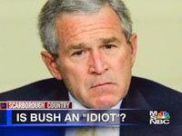 Bush_idiot_220
