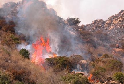 Topanga Canyon Wildfire